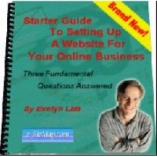 Starter guide to setting up a website PDF ebook