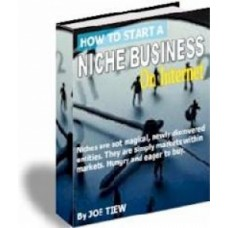 How to start a niche business on the internet PDF ebook